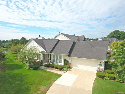 Northville Condo/Townhouse For Sale: 39493 Village Run Drive