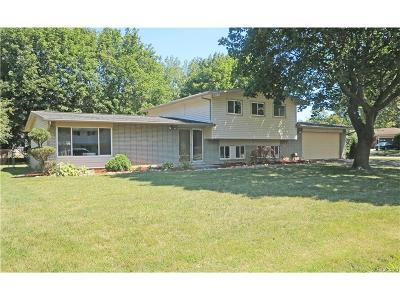 Farmington Hills Single Family Home For Sale: 32312 W Wayburn Street