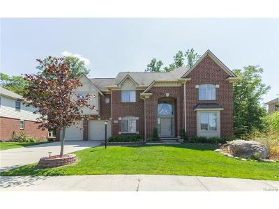 Novi Single Family Home For Sale: 41715 Steinbeck Glenn
