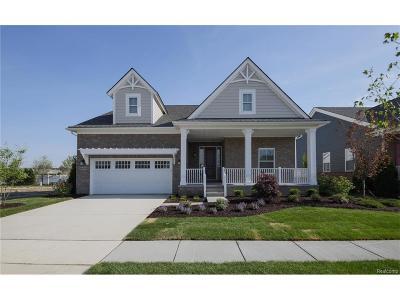Canton Single Family Home For Sale: 49597 Hancock Street