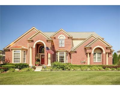 Canton Single Family Home For Sale: 48314 Roundstone Court