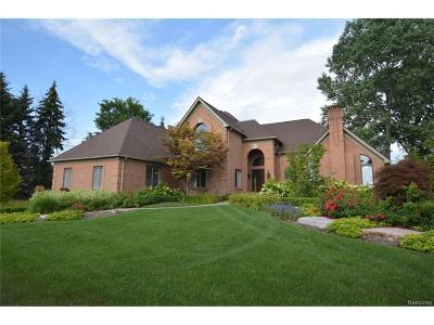 Northville Single Family Home For Sale: 1008 McDonald Drive