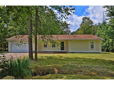 Farmington, Farmington Hills Single Family Home For Sale: 21411 Orchard Lake Road