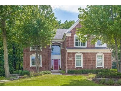 Northville Single Family Home For Sale: 45753 Riviera Drive