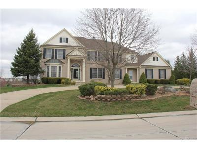 Plymouth Single Family Home For Sale: 50380 Top Of Hill Drive