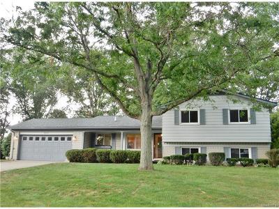 Novi Single Family Home For Sale: 23215 Balcombe
