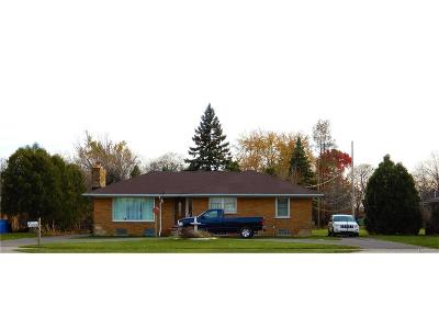 Dearborn Single Family Home For Sale: 27151 Ford Road