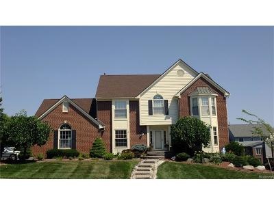 Troy Single Family Home For Sale: 6594 Westlake Court
