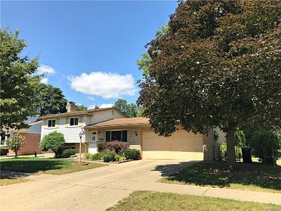Canton Single Family Home For Sale: 39614 Edmundton Drive