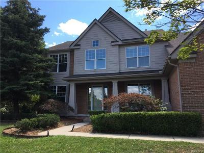 West Bloomfield, West Bloomfield Twp Single Family Home For Sale: 4709 Walnut Glen