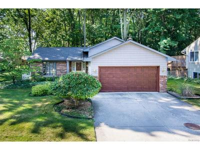 Troy Single Family Home For Sale: 2698 Winter Drive