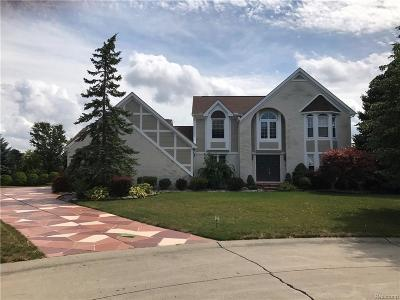 Farmington Hills Single Family Home For Sale: 21862 Aspen Court