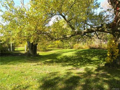 Independence Twp MI Residential Lots & Land For Sale: $60,000