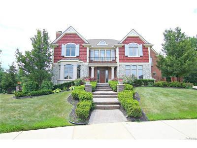 Novi Single Family Home For Sale: 26131 Sunbury Court
