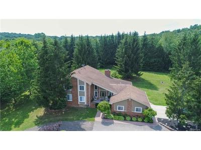 Lyon Twp Single Family Home For Sale: 30657 Old Plank Road
