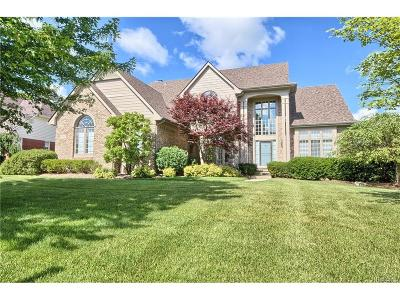 Northville Single Family Home For Sale: 17471 Hilltop View Drive