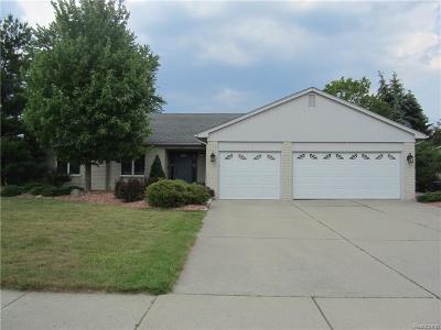 Livonia Single Family Home For Sale: 19184 Glen Eagles Drive