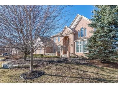 Rochester Hills Single Family Home For Sale: 907 Majestic Drive