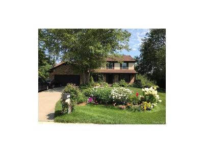 Farmington Single Family Home For Sale: 21174 Parklane Street