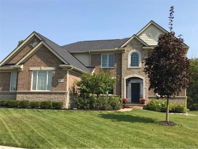 Northville Single Family Home For Sale: 22734 Cyprus Drive