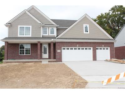 Livonia Single Family Home For Sale: 11879 Adams Ct.
