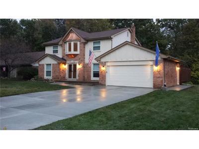 Novi Single Family Home For Sale: 44121 Winthrop