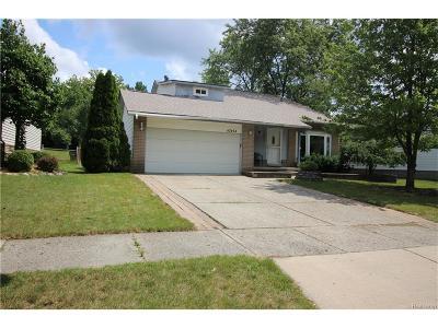 Novi Single Family Home For Sale: 42464 Park Ridge Road