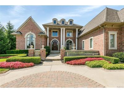 Novi Single Family Home For Sale: 21299 Bridle Run