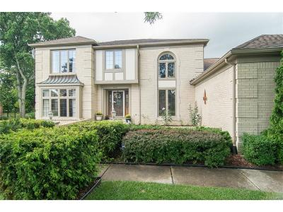 Rochester Hills Single Family Home For Sale: 3331 Salem Court