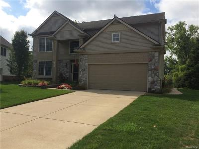 South Lyon MI Single Family Home For Sale: $350,000