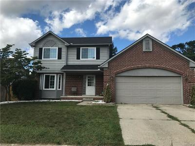 Livonia Single Family Home For Sale: 8997 Stonehouse Avenue