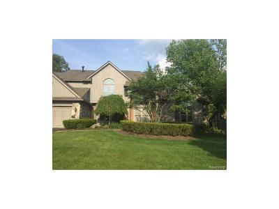 West Bloomfield, West Bloomfield Twp Single Family Home For Sale: 4848 Panorama Circle