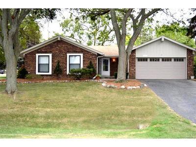 Novi Single Family Home For Sale: 40411 Oakwood Drive S