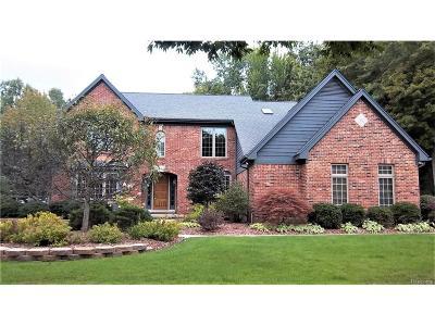 Novi Single Family Home For Sale: 22481 Norfolk Court
