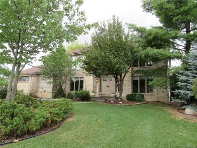 West Bloomfield Single Family Home For Sale: 4855 Fairview Court