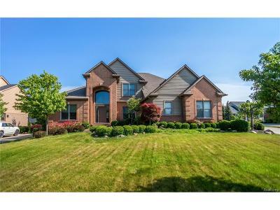 Lyon Twp Single Family Home For Sale: 54864 Grenelefe Circle E