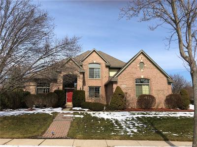 Novi Single Family Home For Sale: 47310 Baker Street