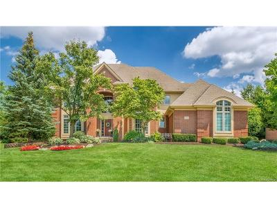 Northville Single Family Home For Sale: 17512 Hilltop View Drive
