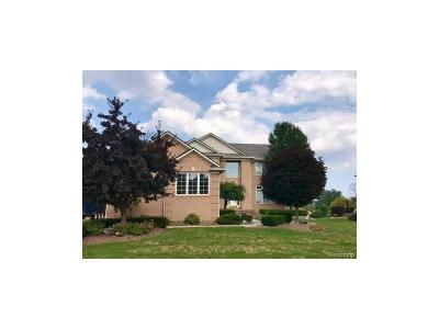 Rochester Hills Single Family Home For Sale: 2949 Fair Acres Drive