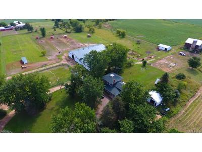 Shiawassee County Single Family Home For Sale: 14120 S Scribner Road