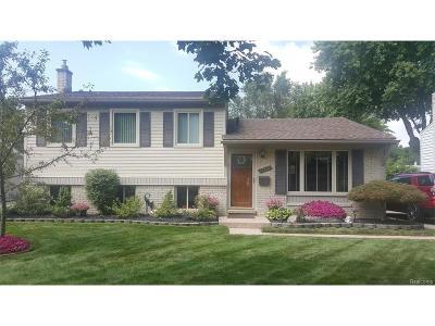 Livonia Single Family Home For Sale: 14101 Hix Street
