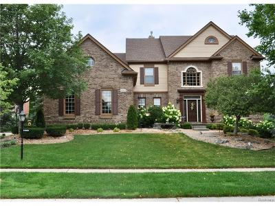 Novi Single Family Home For Sale: 22995 Whitehall Drive
