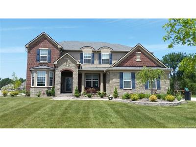 Lyon Twp Single Family Home For Sale: 23631 Underwood Drive