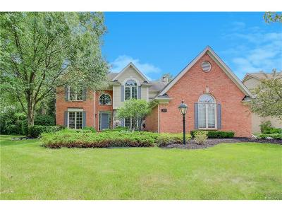Northville Single Family Home For Sale: 39881 Woodside Drive N