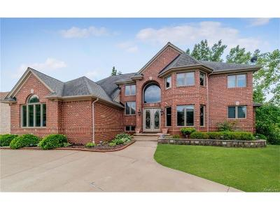 West Bloomfield, West Bloomfield Twp Single Family Home For Sale: 6202 Golden Lane