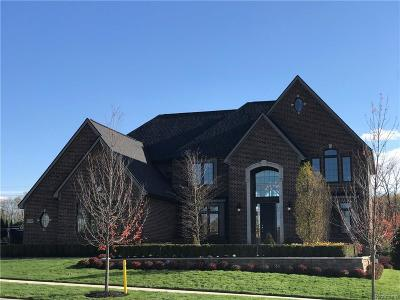 Novi Single Family Home For Sale: 47743 Dunhill Court