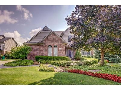 Novi Single Family Home For Sale: 21882 Dunnabeck Court