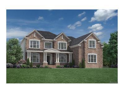 Canton Single Family Home For Sale: 50869 Silverton