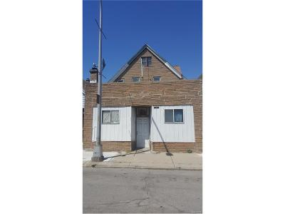 Hamtramck Multi Family Home For Sale: 2263 Holbrook Street