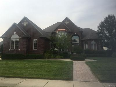 Rochester Hills Single Family Home For Sale: 1525 Clear Creek